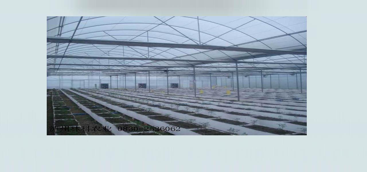 泸州林科农业工程有限公司